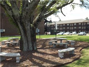 Apartments for rent in tuscaloosa alabama for Landscaping rocks tuscaloosa al